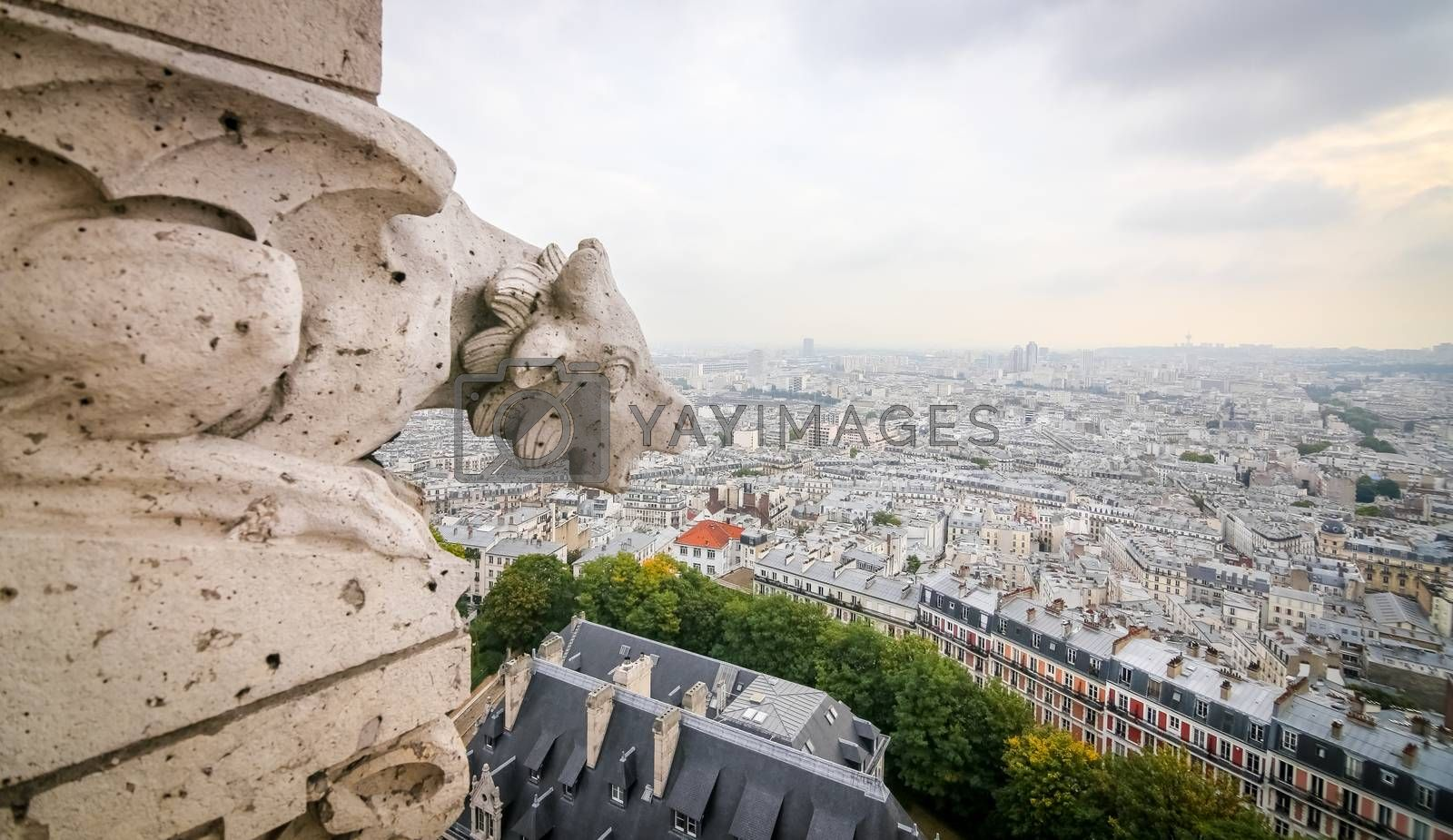 Paris View from Sacre Coeur Basilica by EvrenKalinbacak