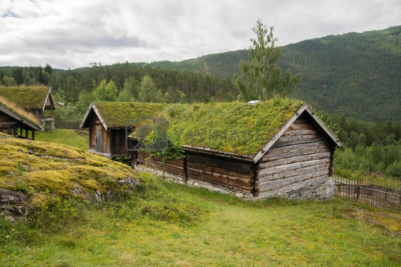 Old houses in ecomuseum in Norway by javax