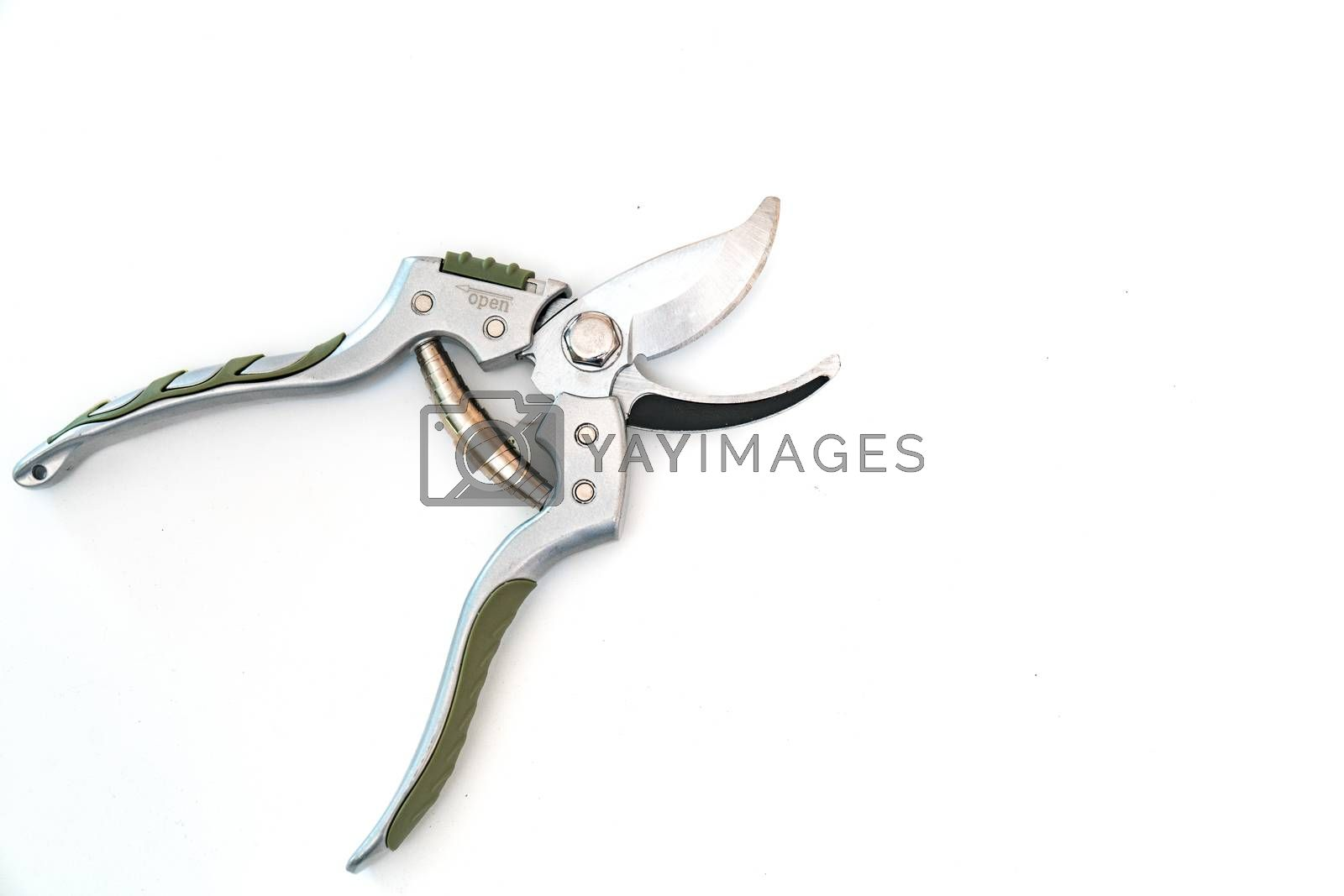 Garden pruner isolated on a white background. Closeup.