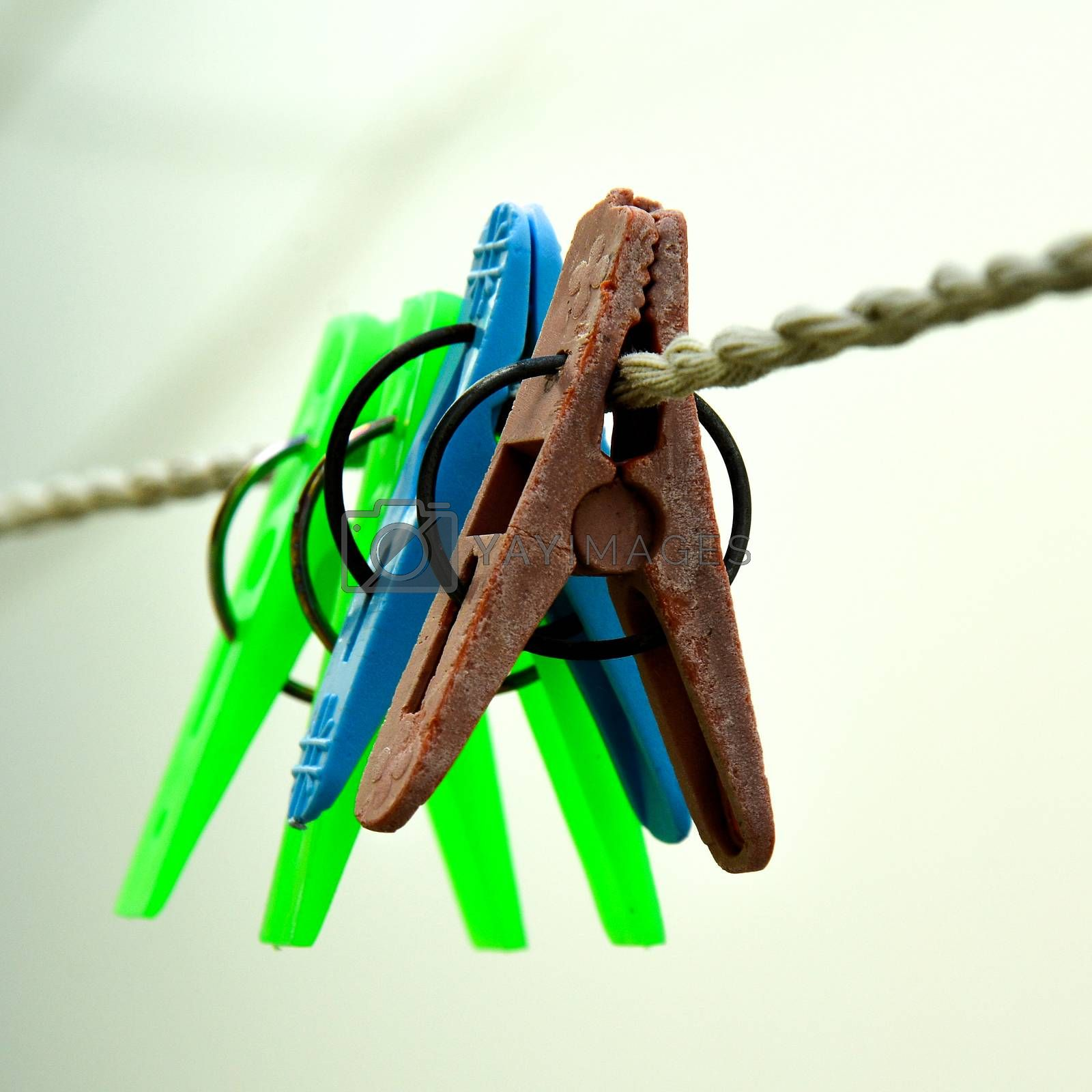Close up of some cloth hanging clips