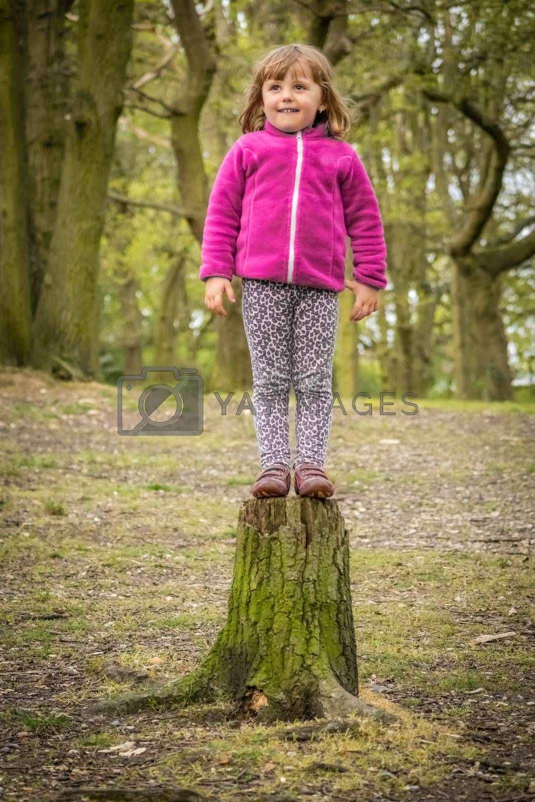 Little girl getting ready to jump from the cut tree in the forest