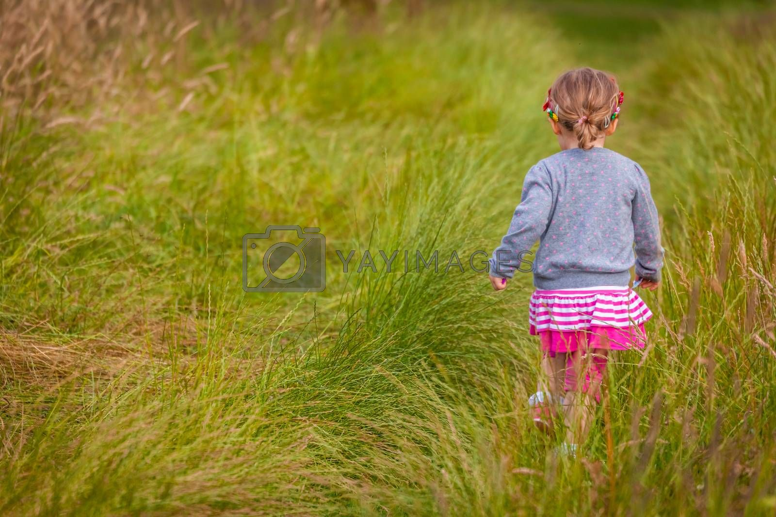 Baby girl walking among the high grass on a meadow in autumn