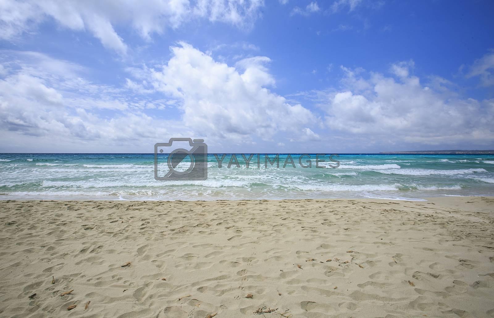 Beach in Formentera ,balearic islands ,Spain