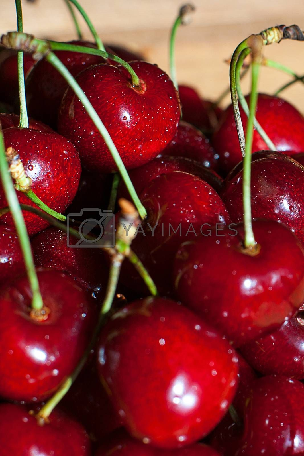 Royalty free image of Fresh juicy cherry on the table by AEK