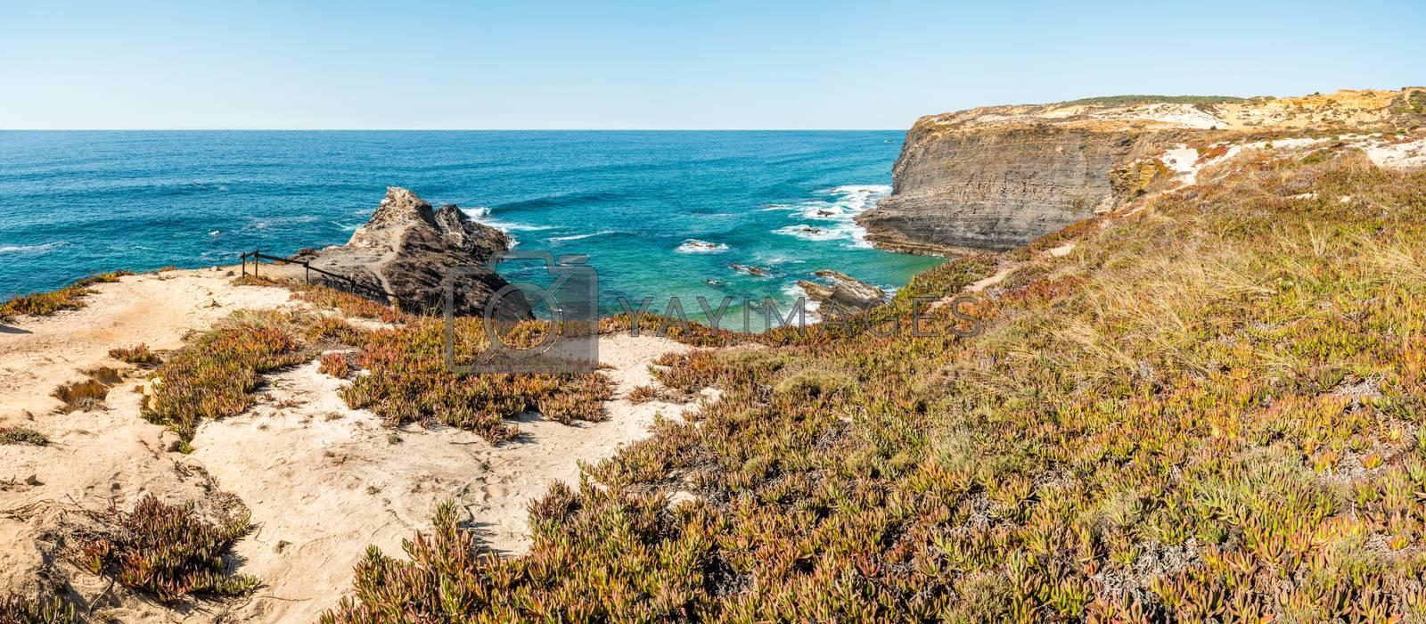 Atlantic ocean coast cliff at Sardao cape (Cabo Sardao) Alentejo Portugal.