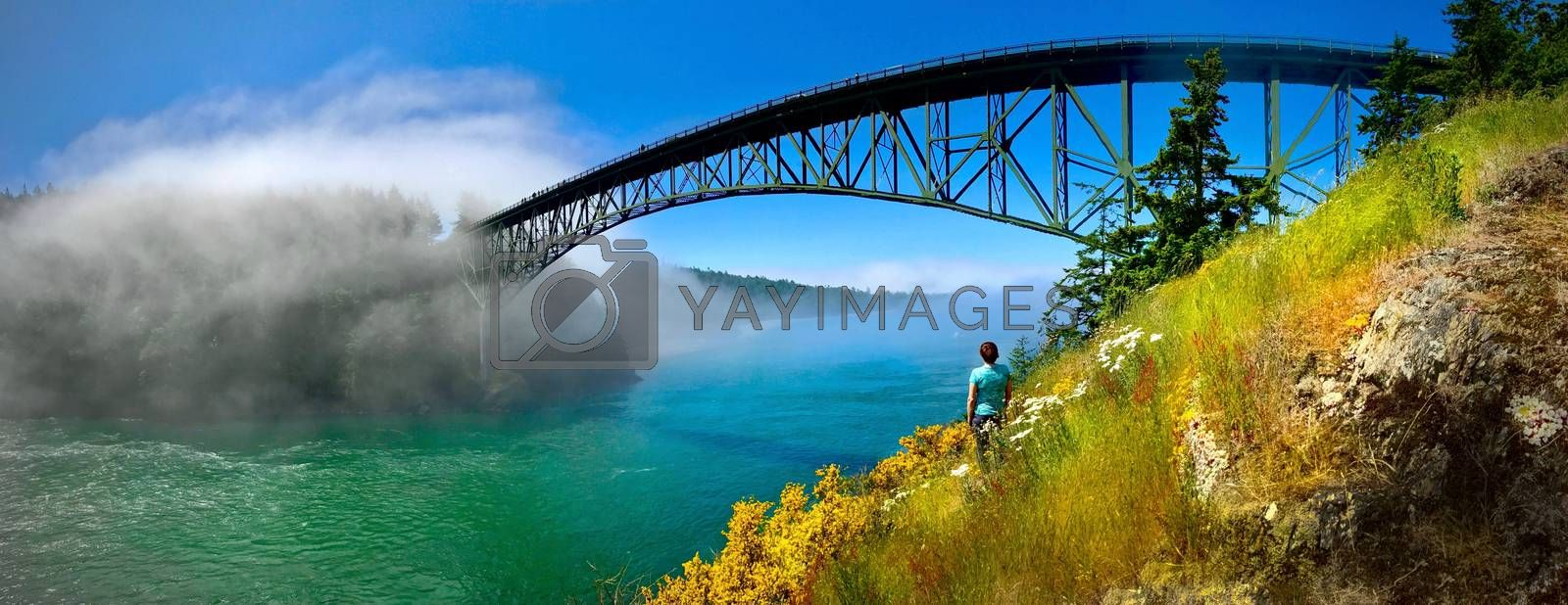 Deception Pass bridge in fog. by Marina Poushkina