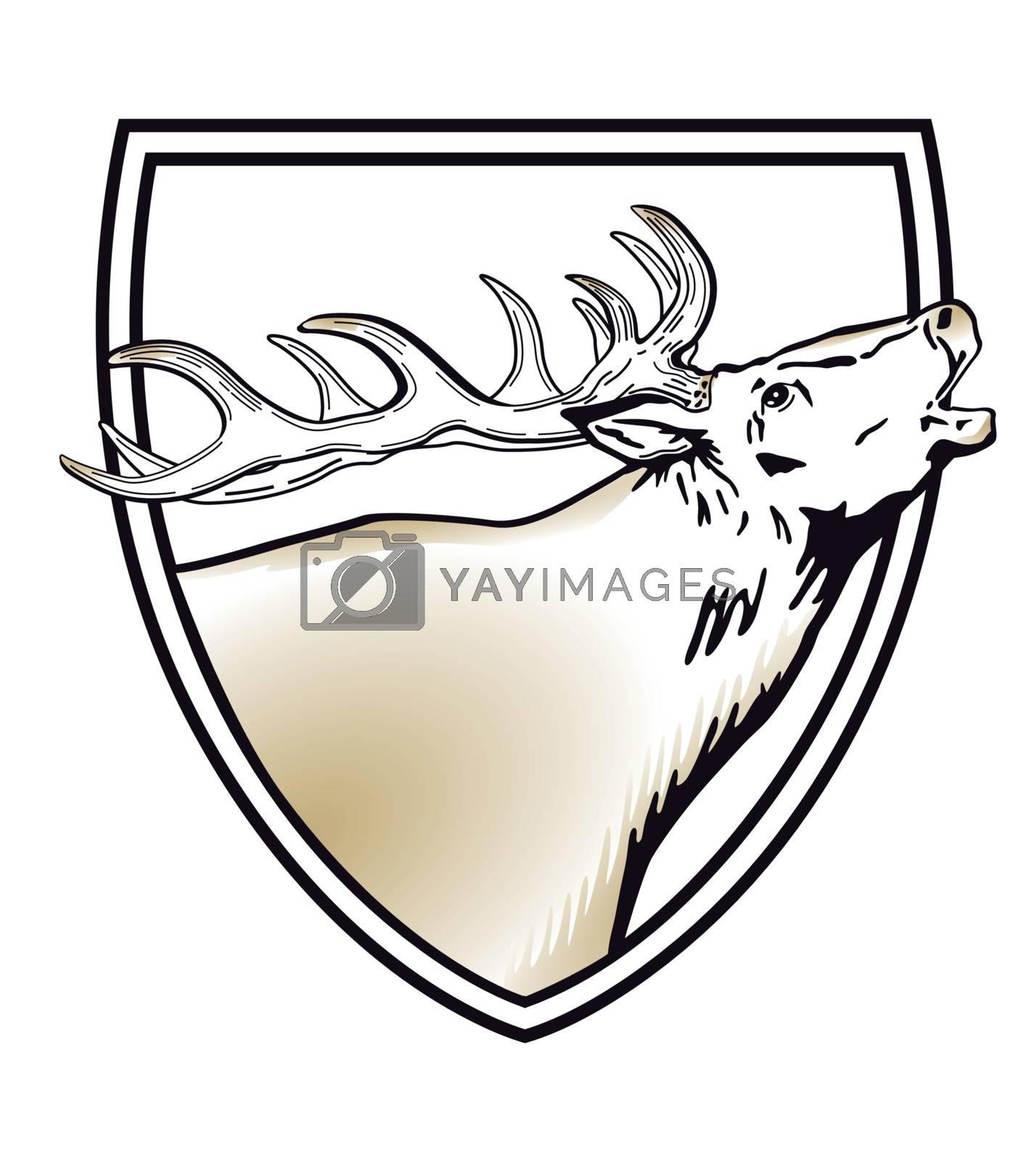 Deer coat of arms, shield, illustration