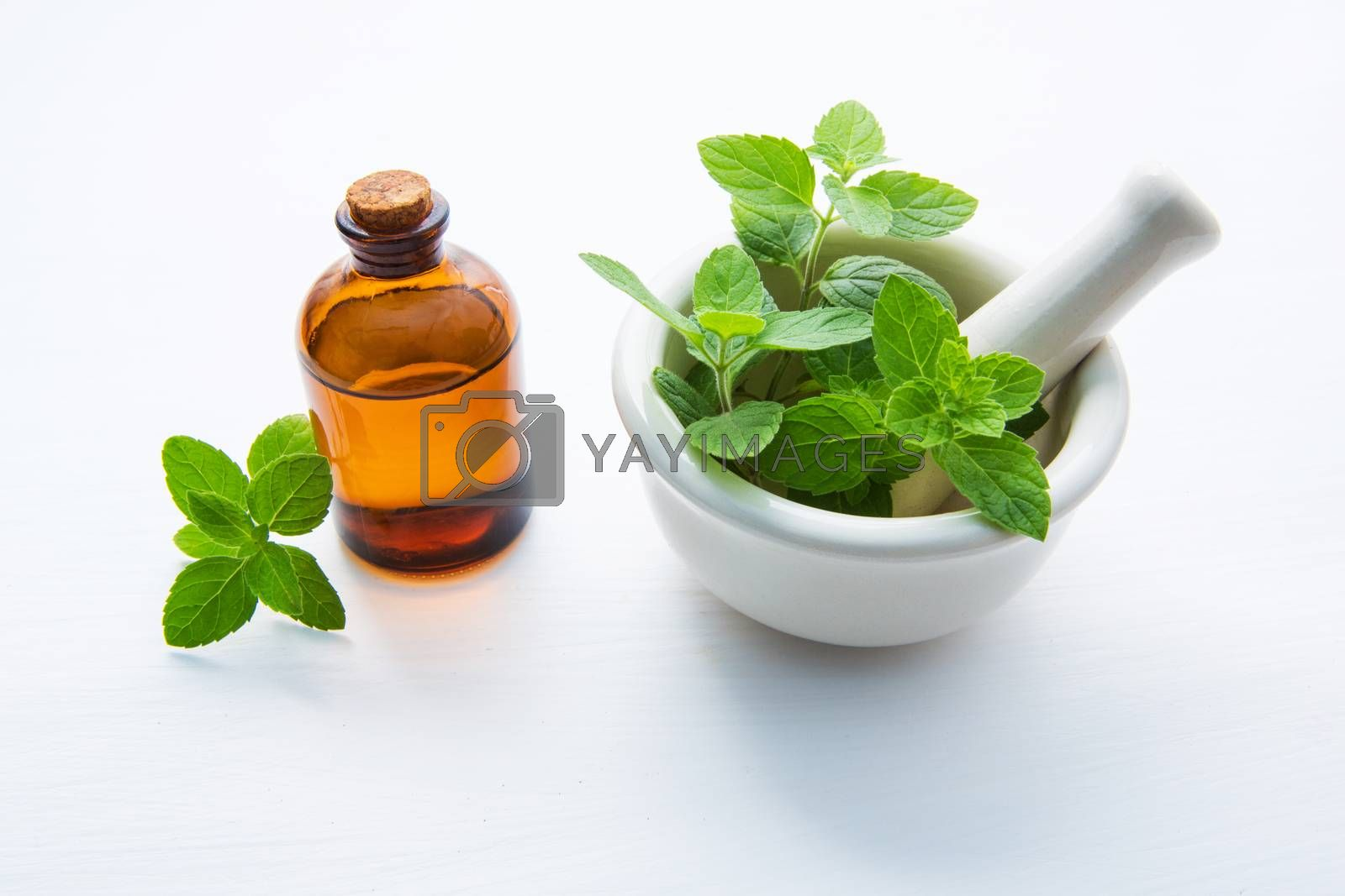 Natural Mint Essential Oil in a Glass Bottle with Fresh Mint Lea by Bowonpat