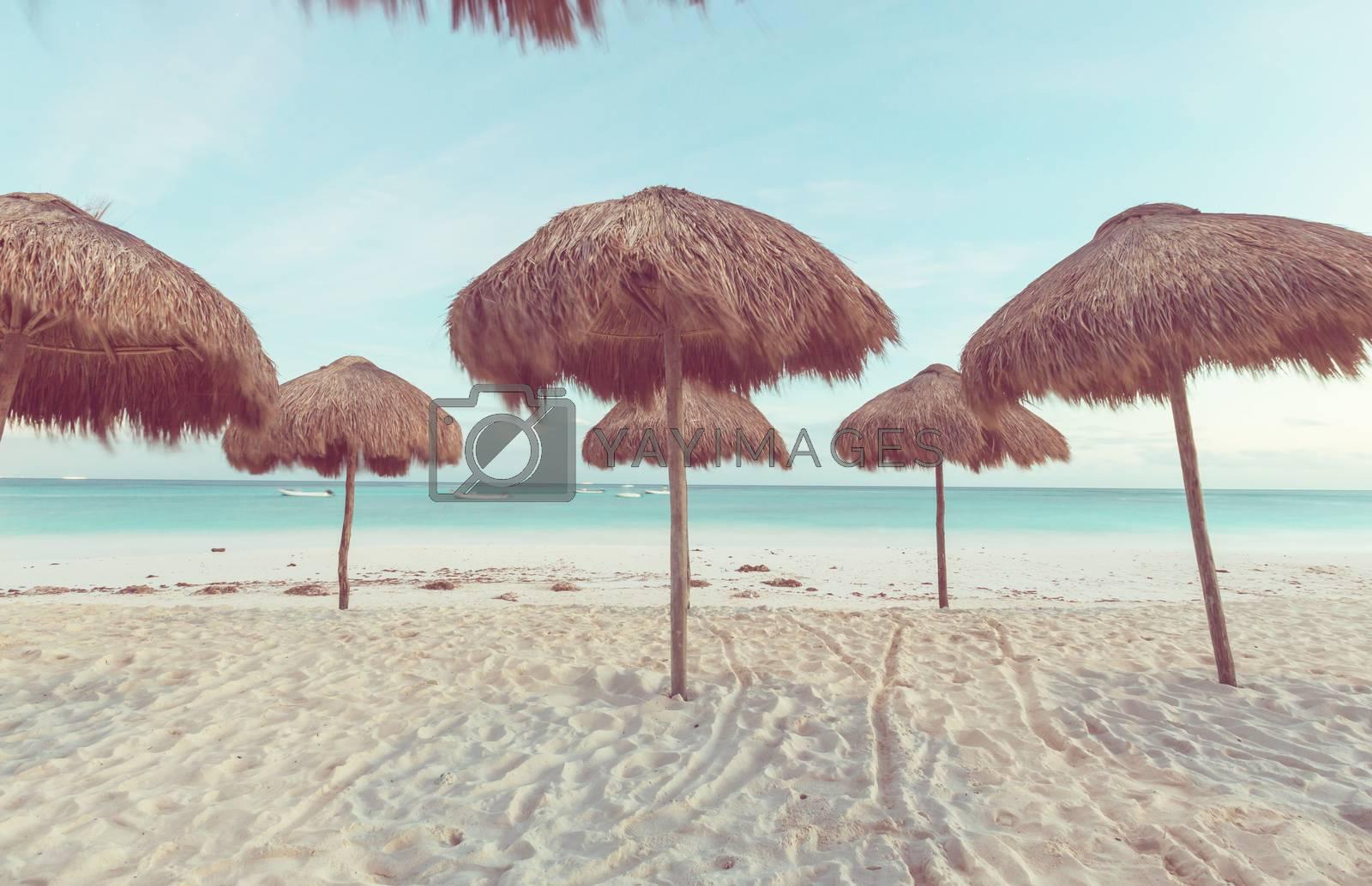 Beautiful ocean beach, Instagram filter