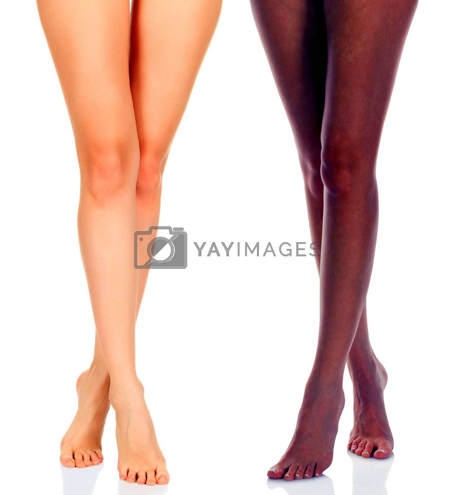 Long woman legs of black and caucasian girls isolated on white background