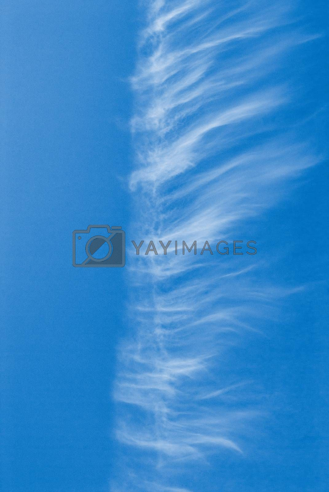Beautiful clouds on a blue sky day in Sunny weather