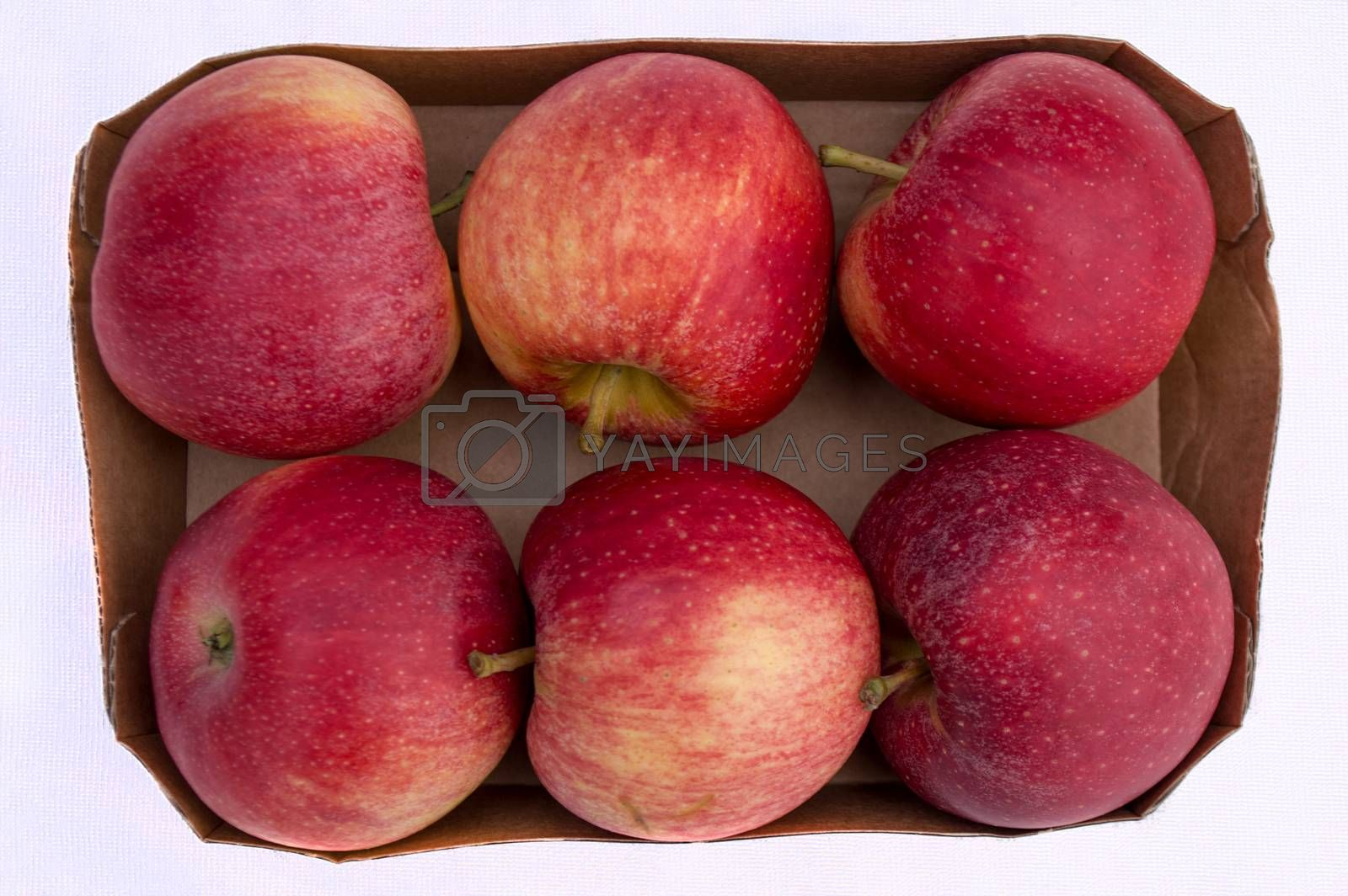 Cardboard box with six red fresh organic apples from supermarket on white background.
