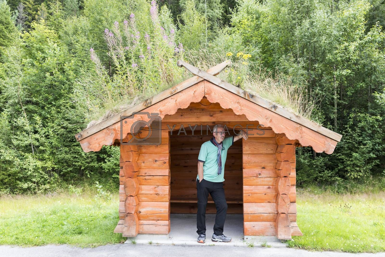 adult man wating for the bus on busstop on the side of the road on the country side in norway. traditional wooden bus stop with grass covered roof,