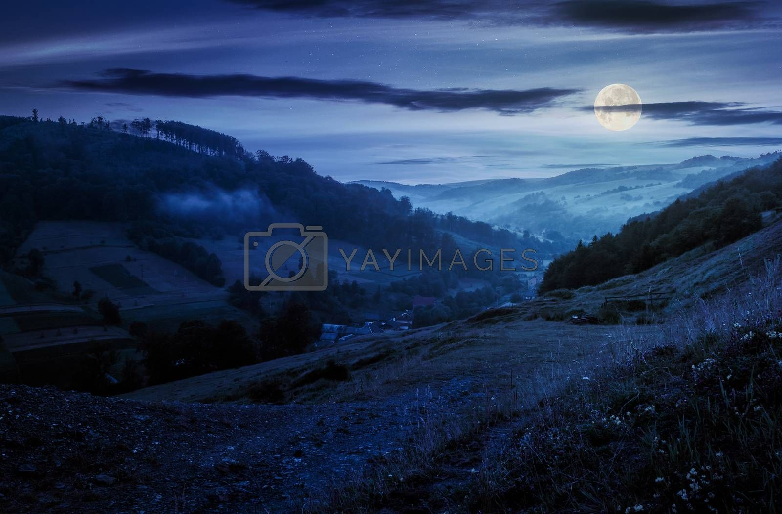 rural valley with forested hills at night by Pellinni