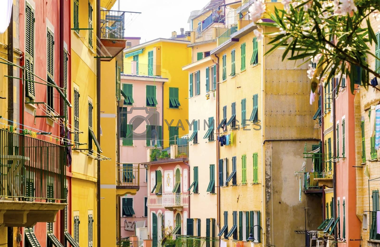 Riomaggiore village, La Spezia province, Liguria, northern Italy. View of the colourful houses on steep hills and laundry on balconies. Part of the Cinque Terre National Park and a UNESCO World Heritage Site.