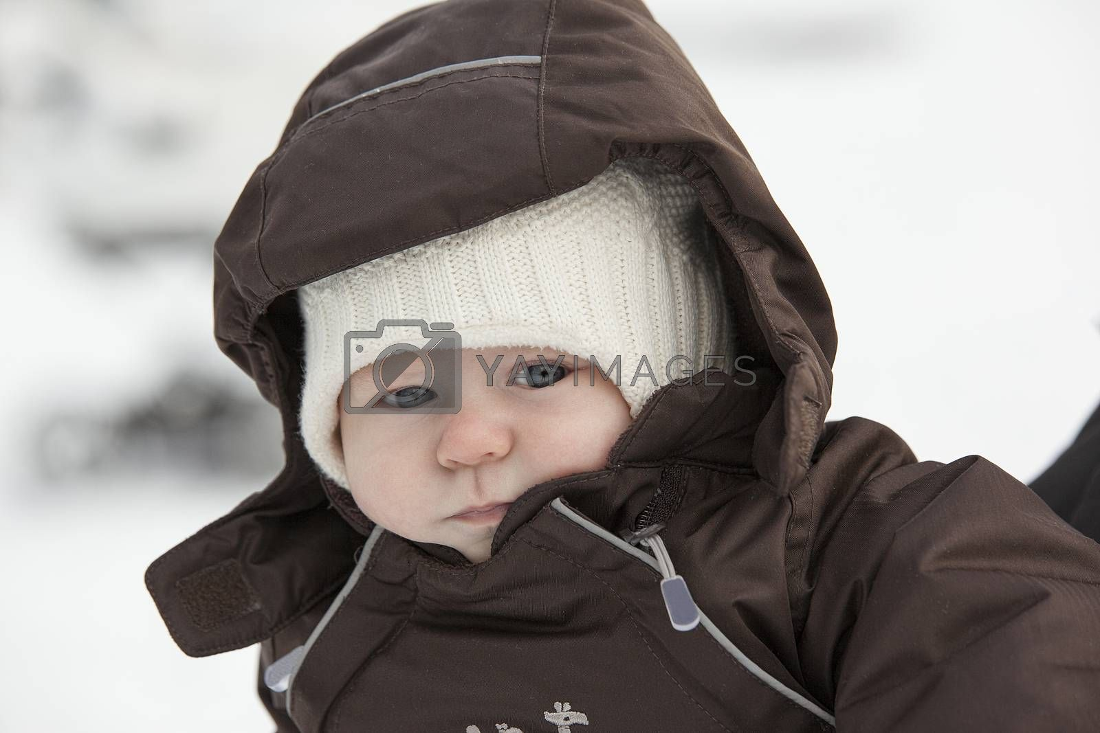Winter portrait of the cute young boy