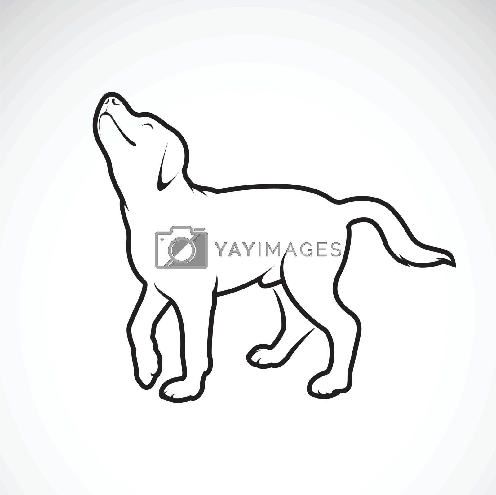 Vector Of A Dog Labrador On White Background Pet Animals Easy Royalty Free Stock Image Stock Photos Royalty Free Images Vectors Footage Yayimages