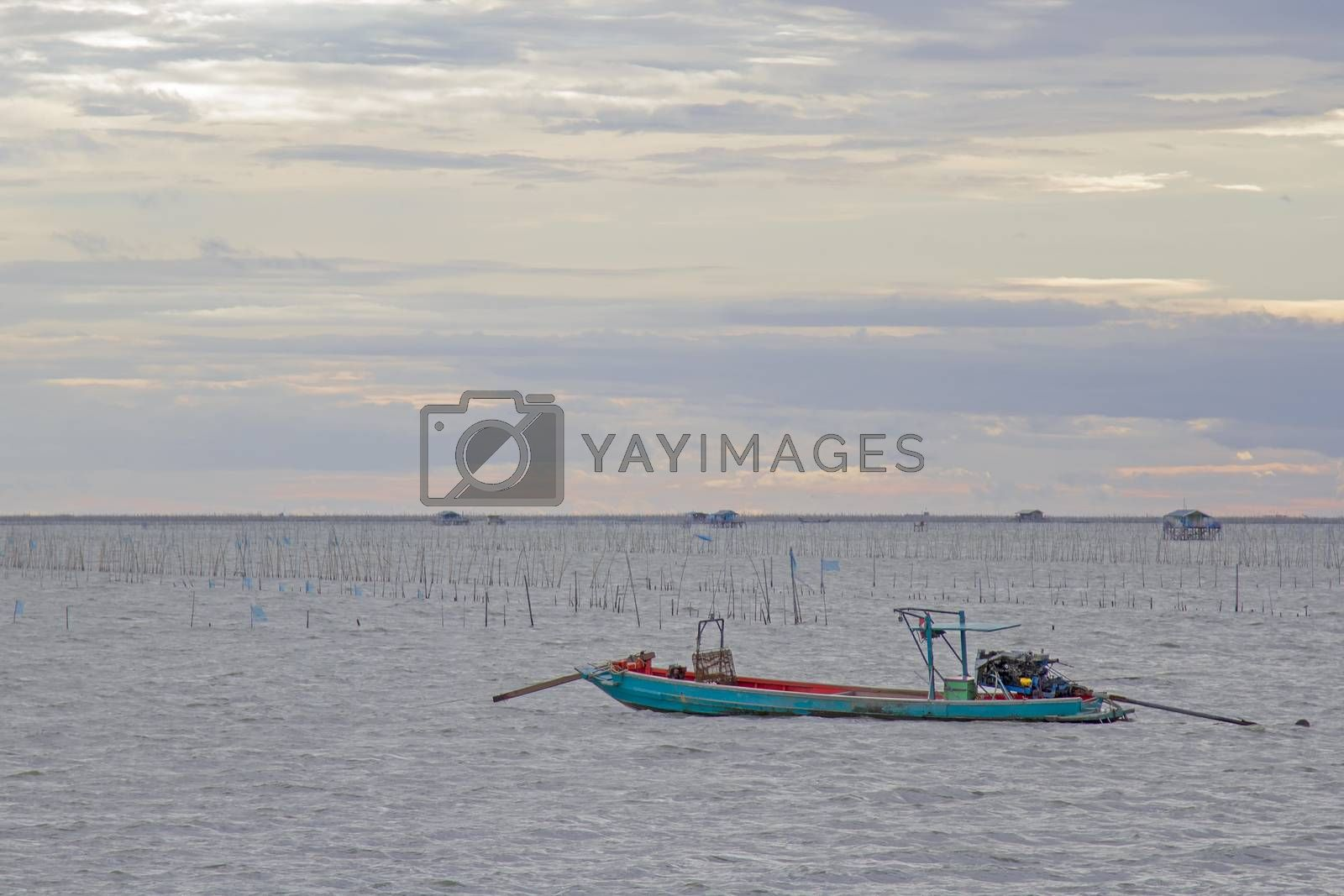 fishing boats go out to sea in the evening.