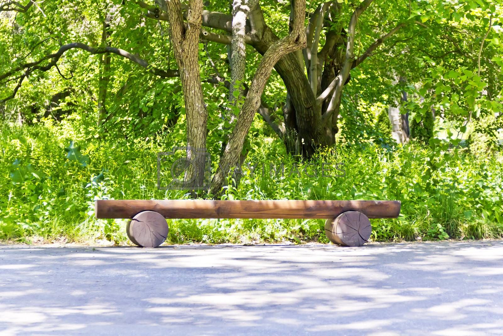 Scenery with empty bench in summer green park