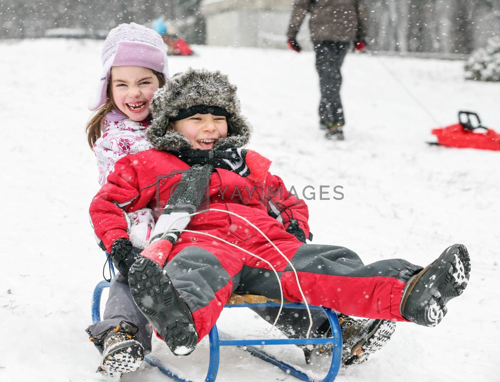 Couple kids, a boy and a girl are sledding in a cold winter day