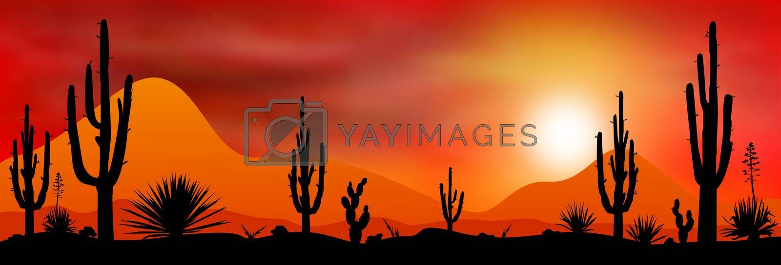 Sunset sun in a stony desert. Silhouettes of stones, cacti and plants. Desert landscape with cacti. The stony desert.