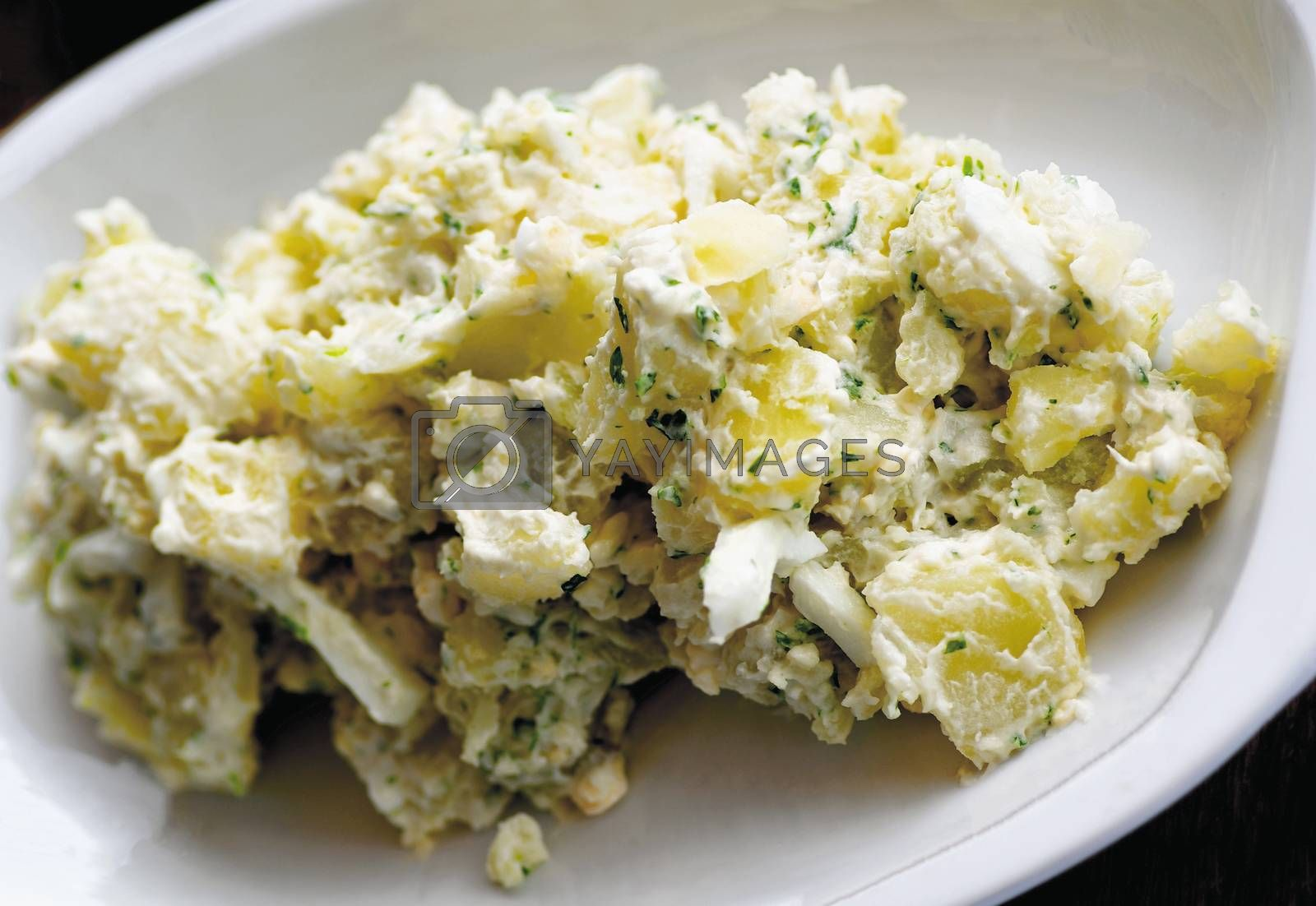 Delicious Freshly Made Creamy Potato Salad with Chives on White Plate closeup. Selective Focus