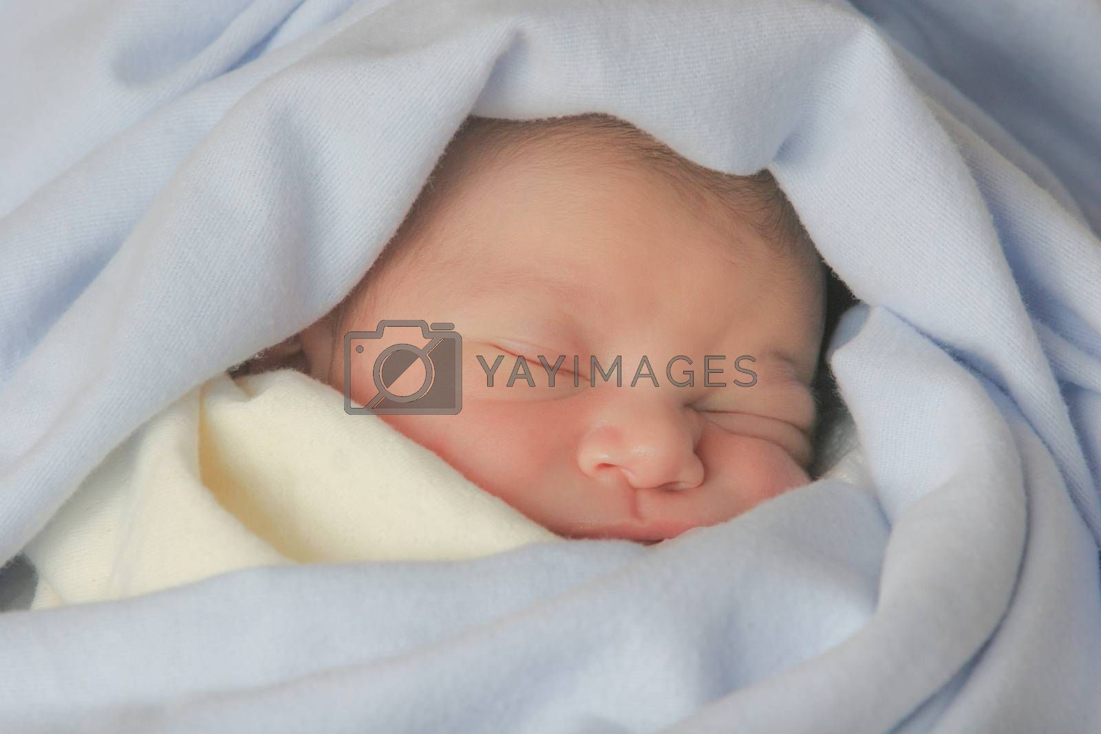 Cute sleeping baby, covered with soft cotton blankets.
