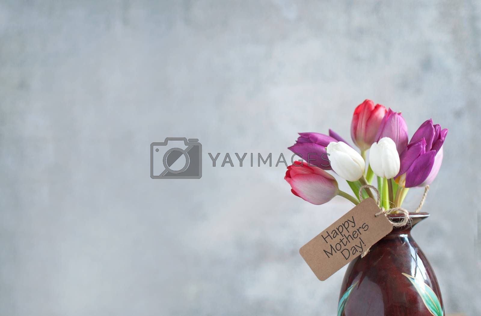 Mothers day gift label attached to selection of tulip flowers in a pot
