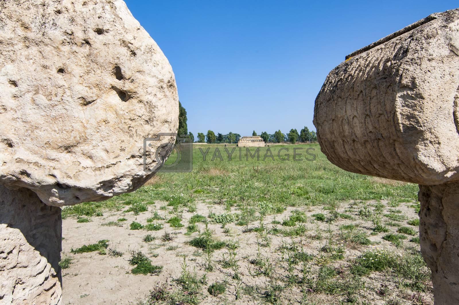 Metaponto archaeological area cities of Magna Greece Basilicata Italy