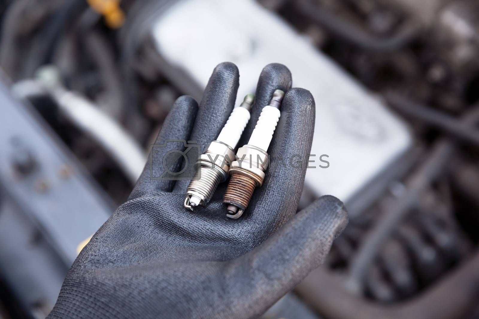 Auto mechanic wearing protective work glove holds old and new spark plugs over a car engine