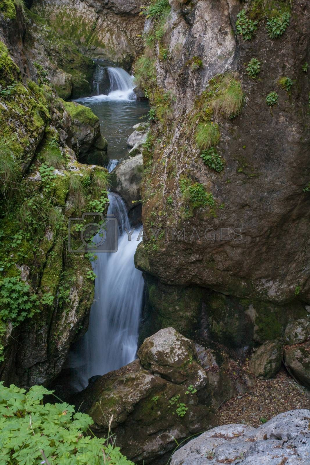 Royalty free image of Waterfall Rocks Nature by vilevi