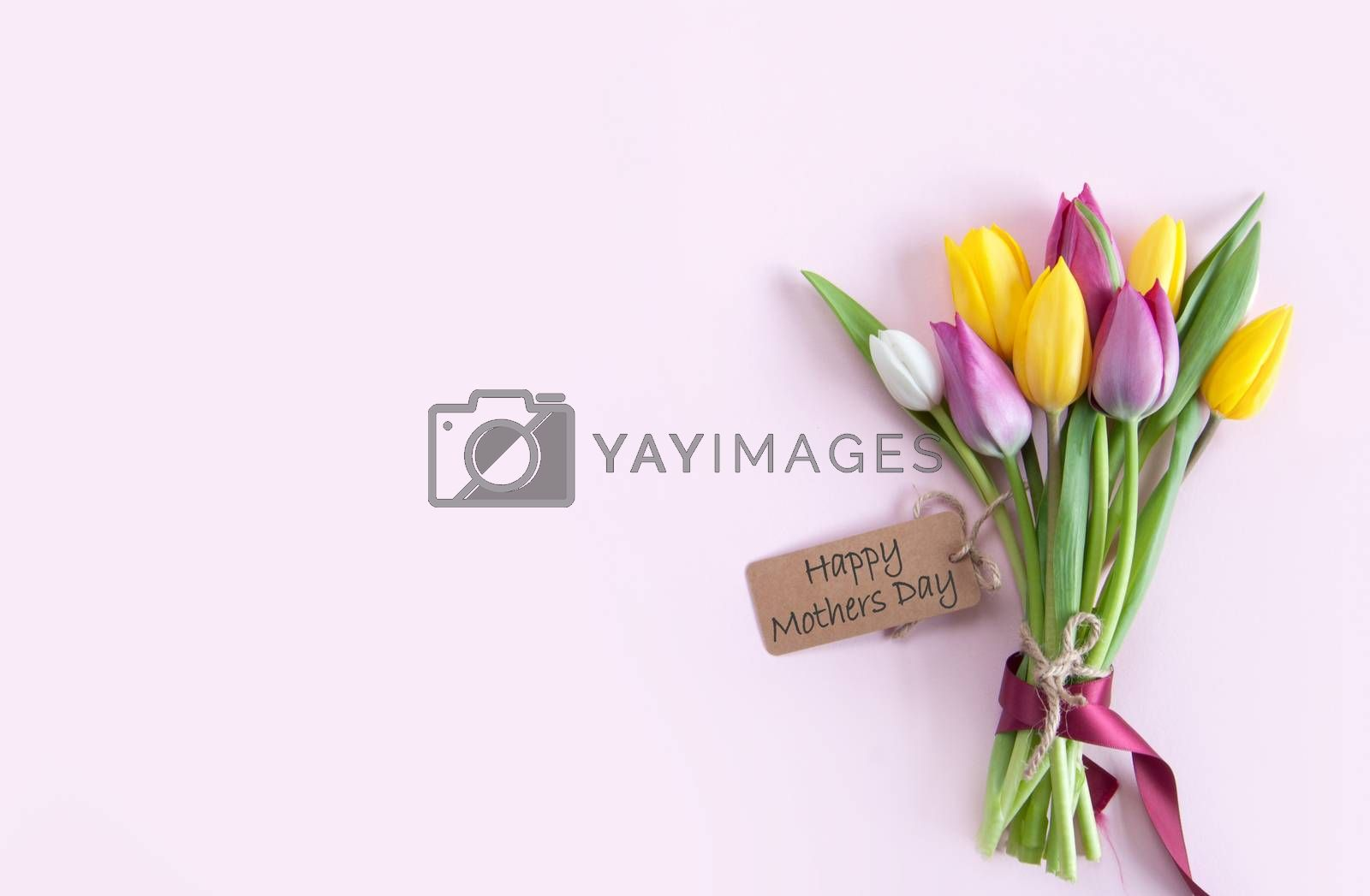 Mothers day gift label attached to selection of tulip flowers