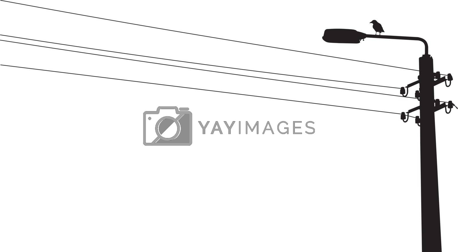 A crow sitting on the street lamp with wires. Vector silhouette illustration