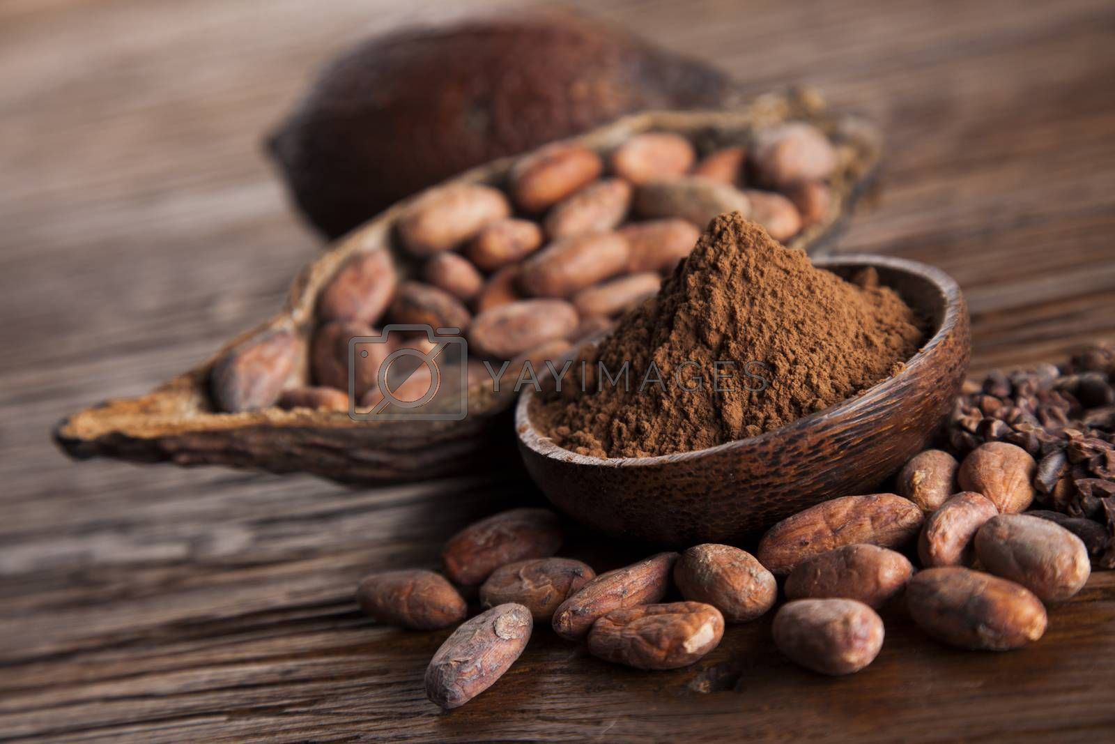 Royalty free image of Cocoa beans in the dry cocoa pod fruit on wooden background by JanPietruszka