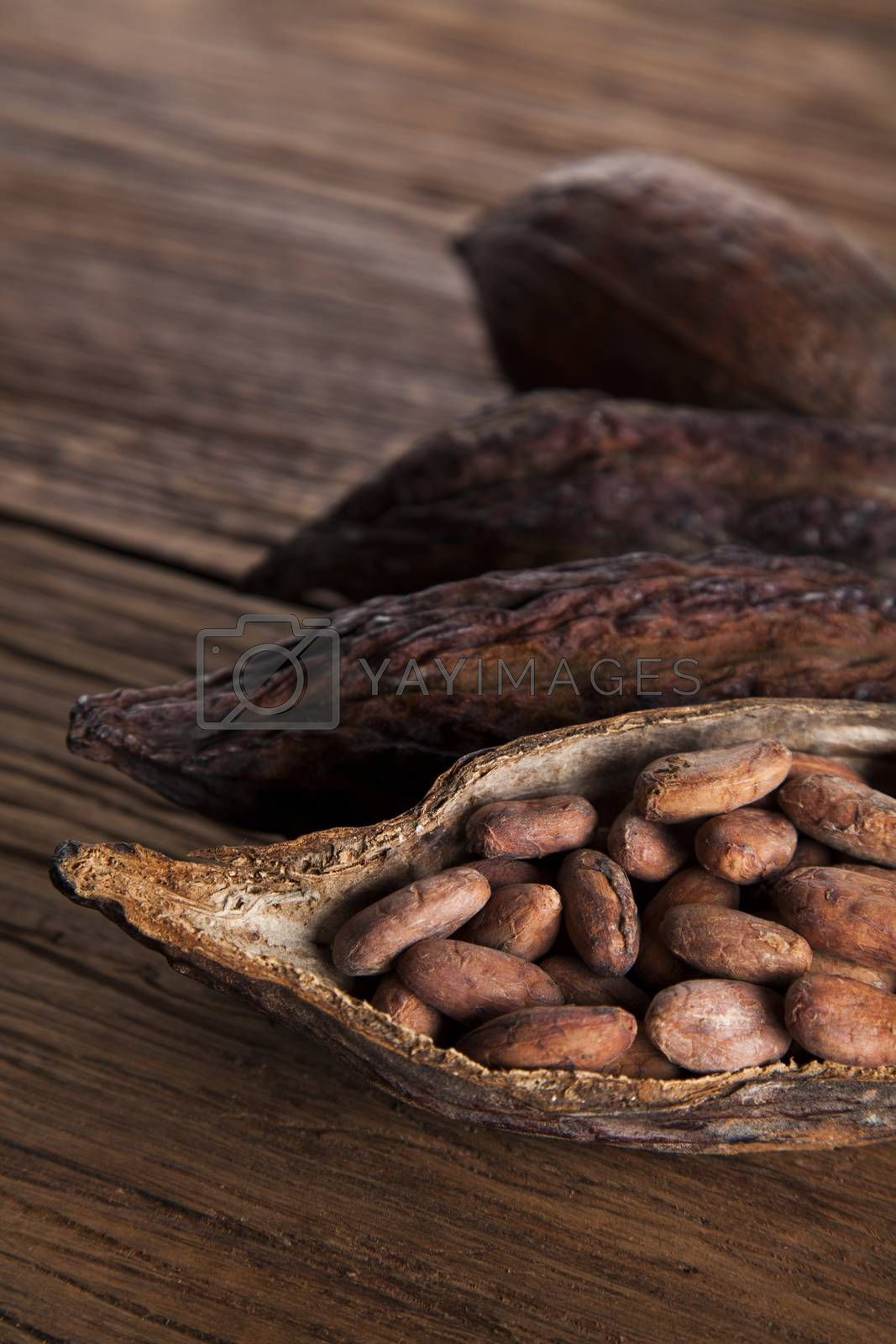 Royalty free image of Cocoa pod on wooden background by JanPietruszka