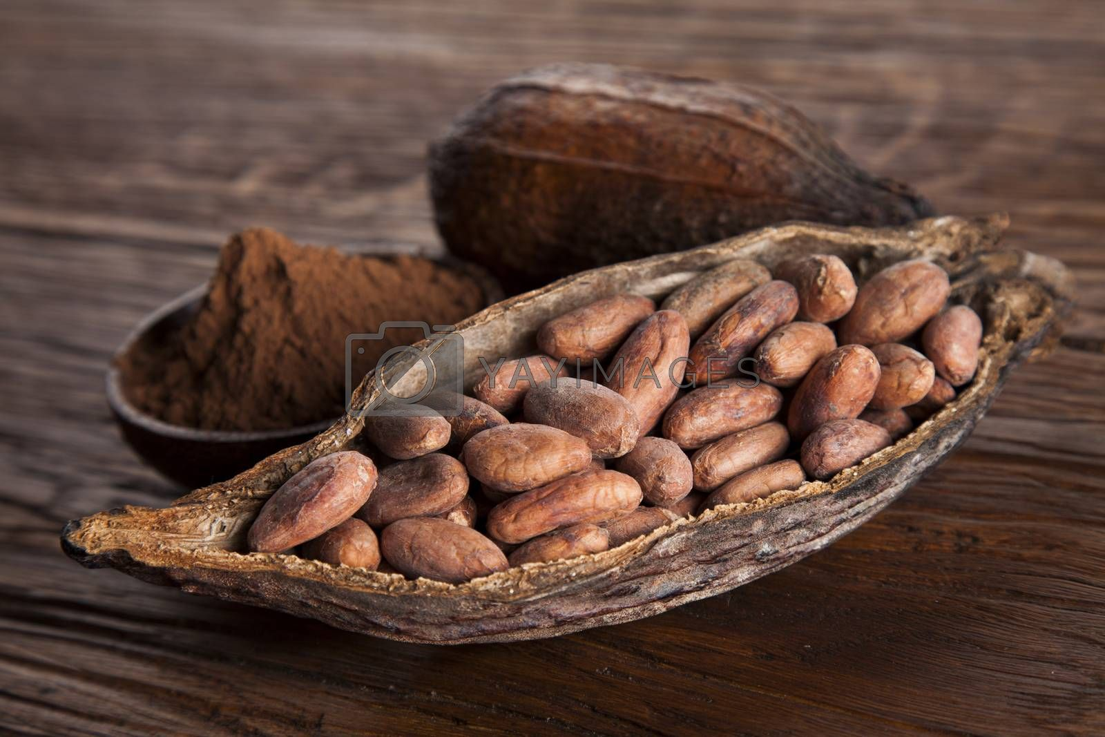 Royalty free image of Cacao beans and powder and food dessert background by JanPietruszka