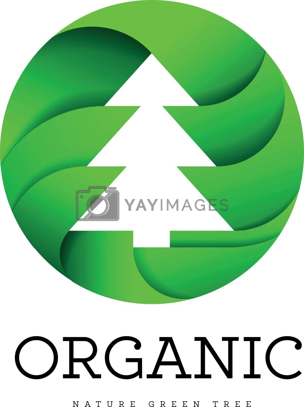 Organic tree spruce sign on a white background in the shape of a circle. Logo for organic and all that is connected with trees and nature. Vector illustration on white background
