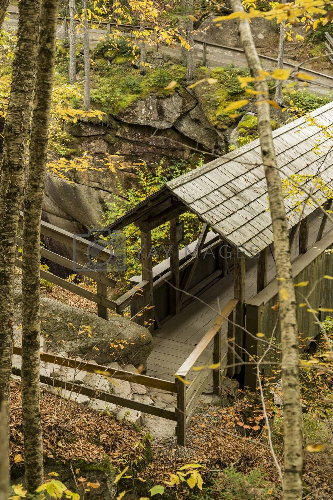 Sentinel Pine Covered Bridge in Franconia Notch State Park, New Hampshire
