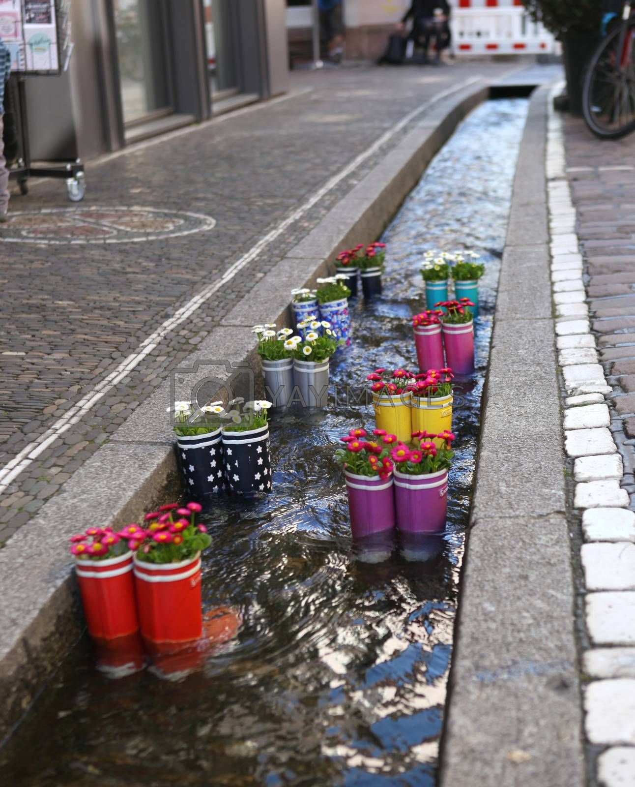 Rubber boots in the water with flowers in the city of Freiburg. Tourist attraction in the city center