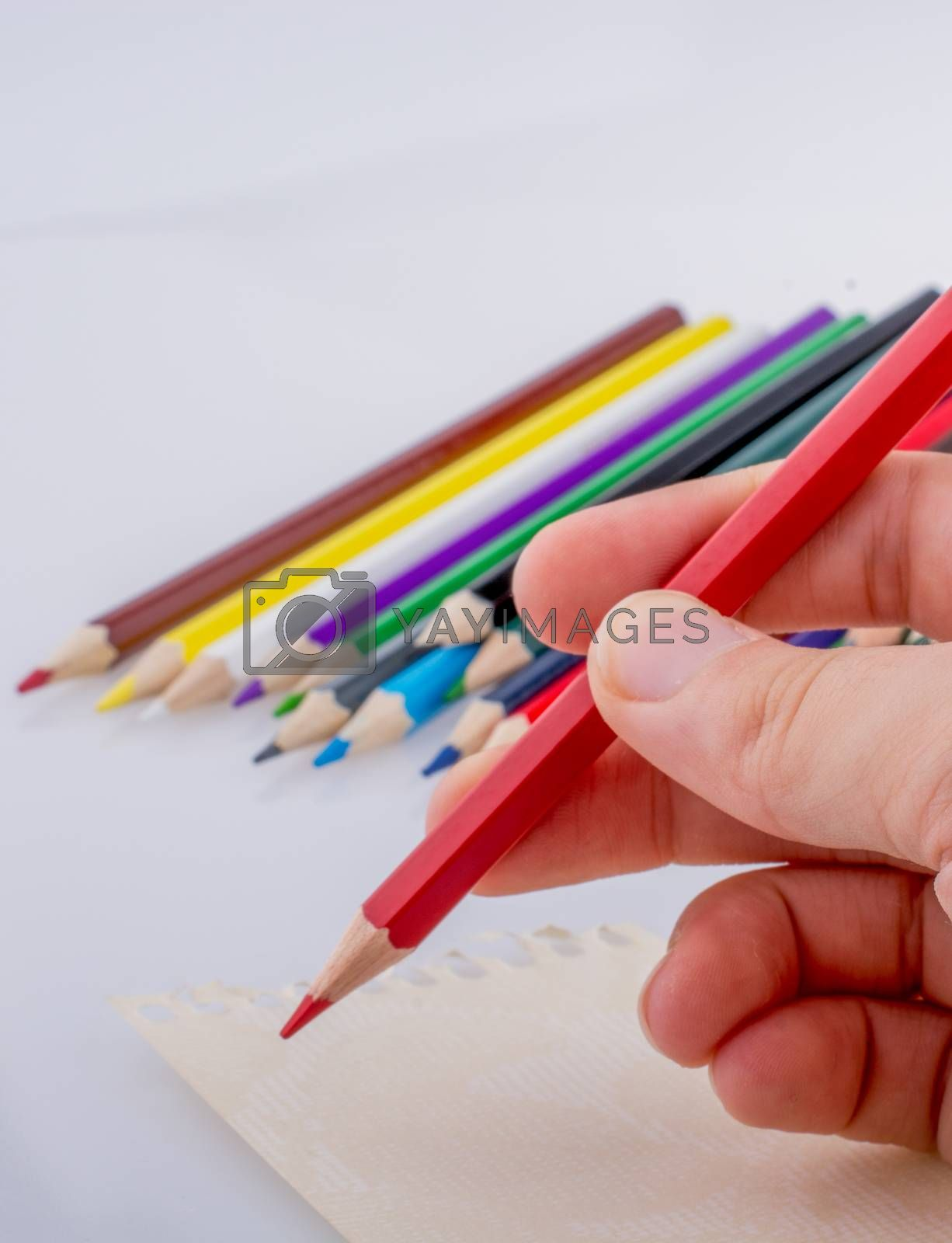 Hand holding a pencil beside the colorful pencils  on a white background