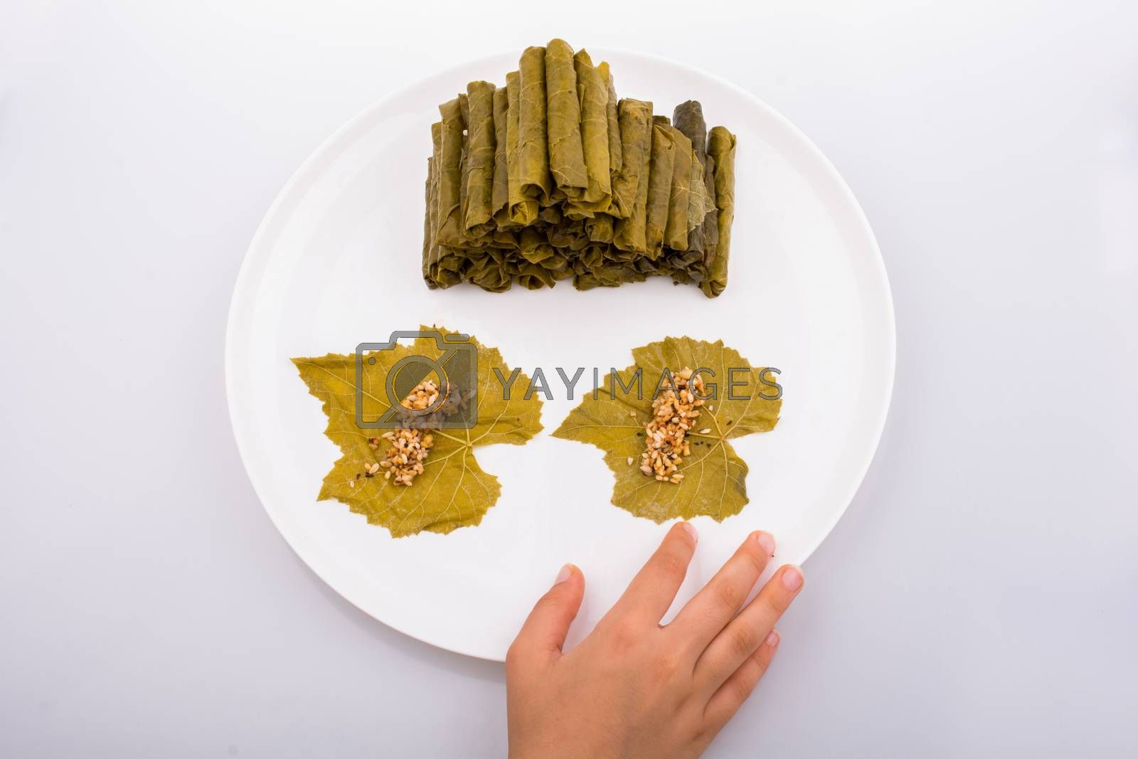 Hands making stuffed grape leaves in Turkish style