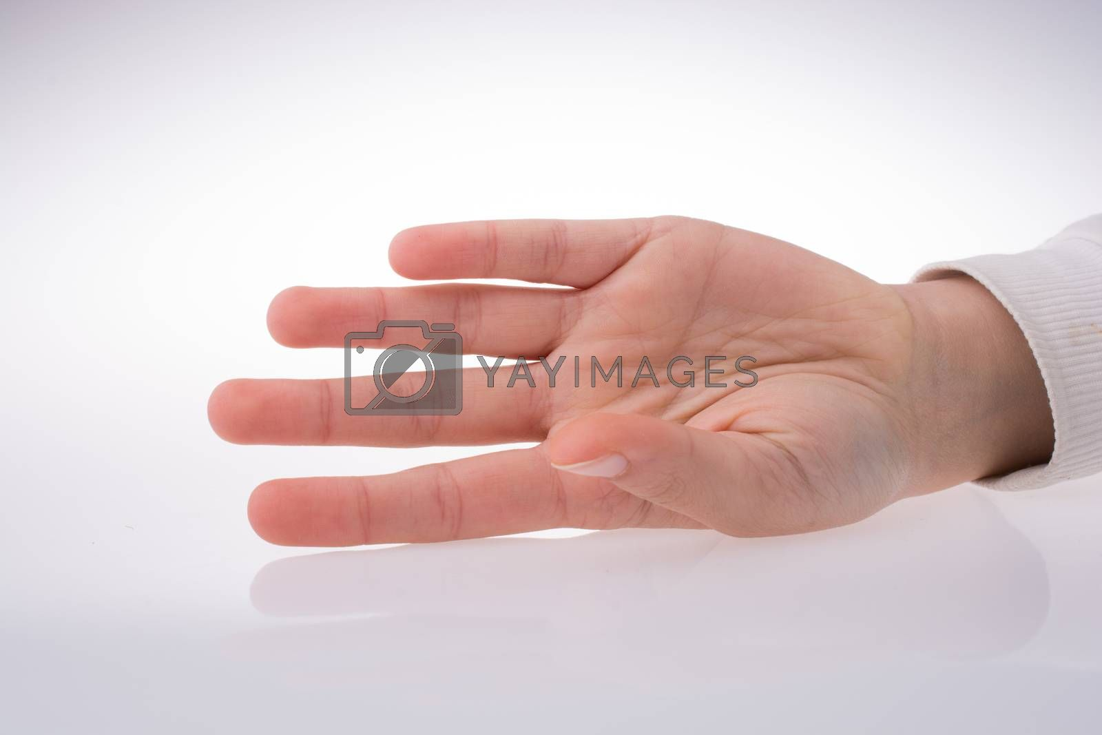 Hand open for a gesture isolated on white background