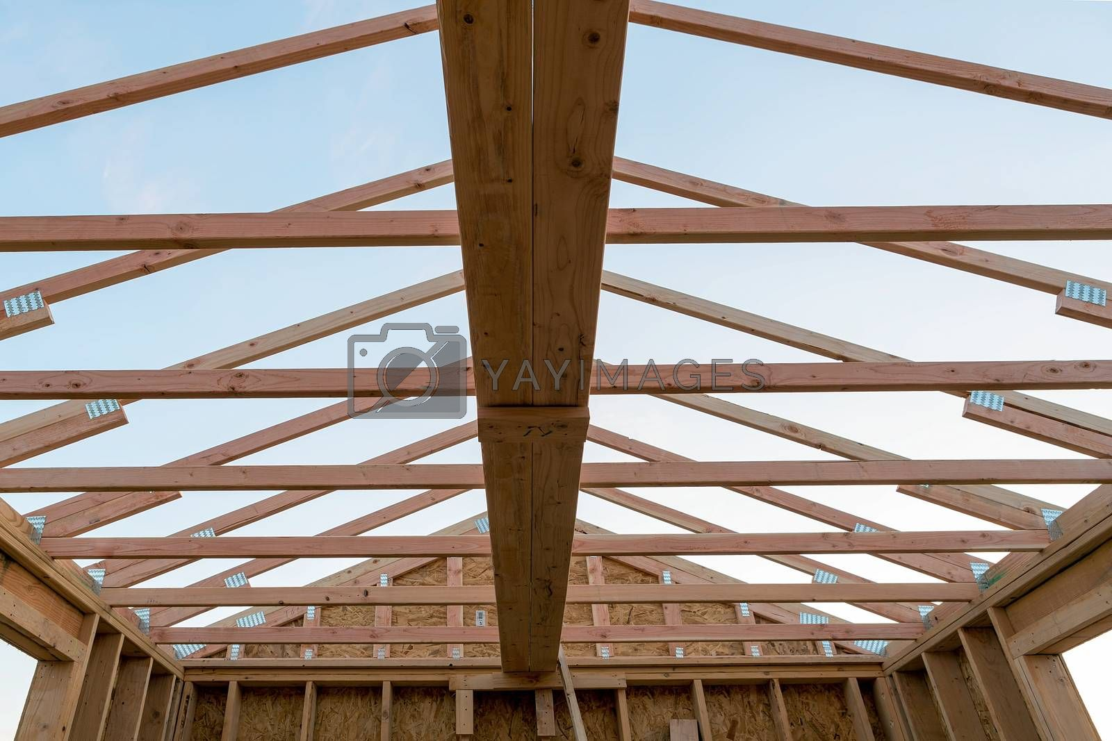 Roof support beams and wood studs framing in new home construction