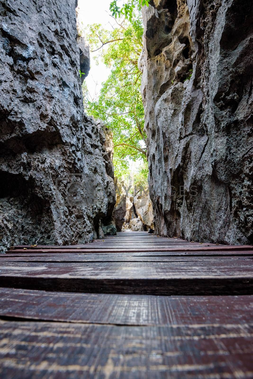 Wooden bridge in the narrow gorge is a walking trail for nature tourism at Thale Nai on Koh Mae Ko island in Mu Ko Ang Thong National Park, Surat Thani, Thailand