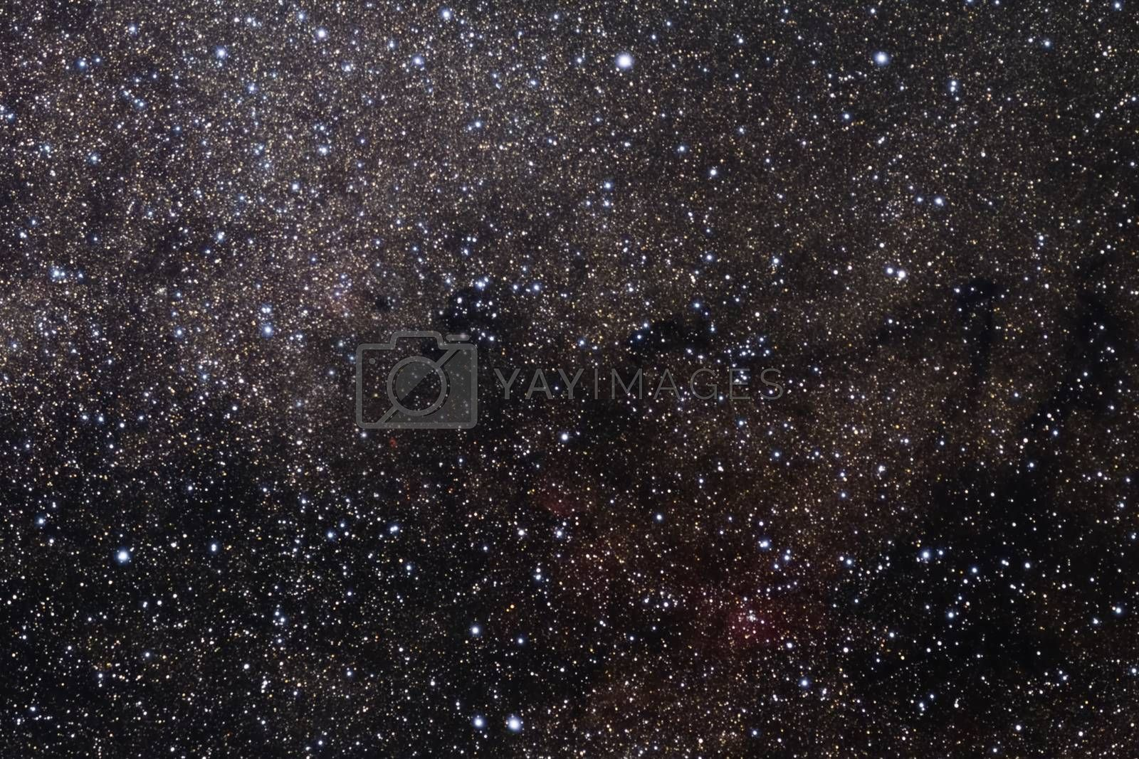 The star sky a background texture, galaxies in the night sky. Graphics image of the star sky by Nirkov