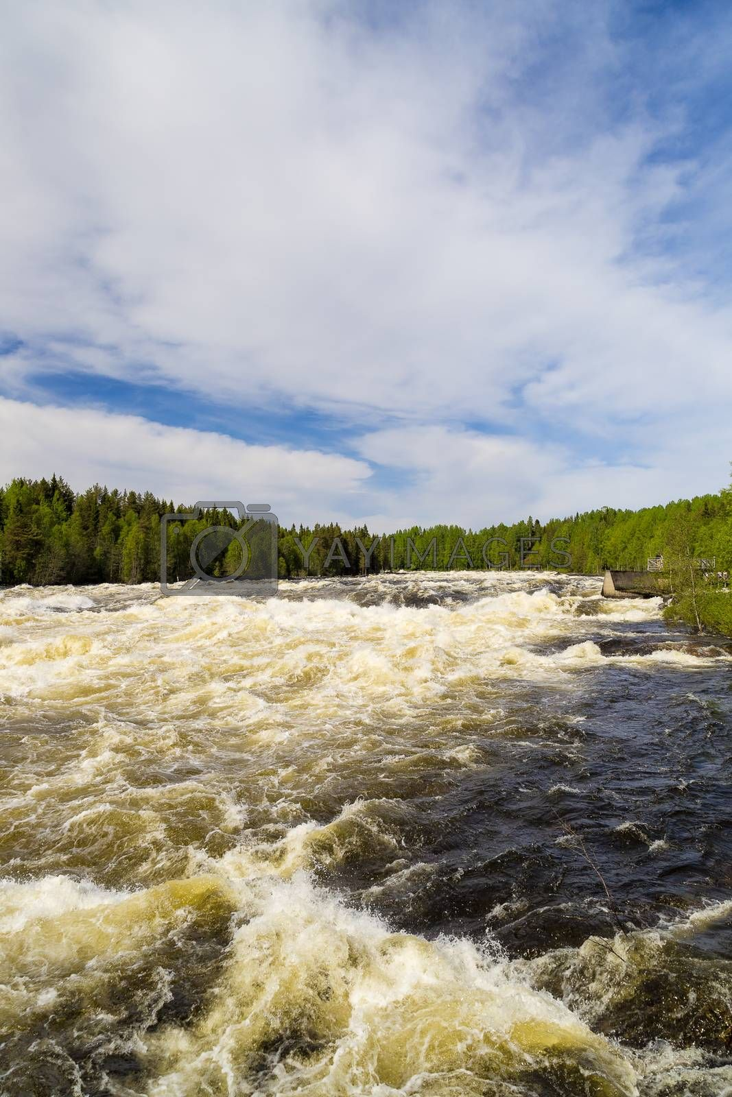 The rapids at Renforsen in Vindeln, Sweden by Emmoth