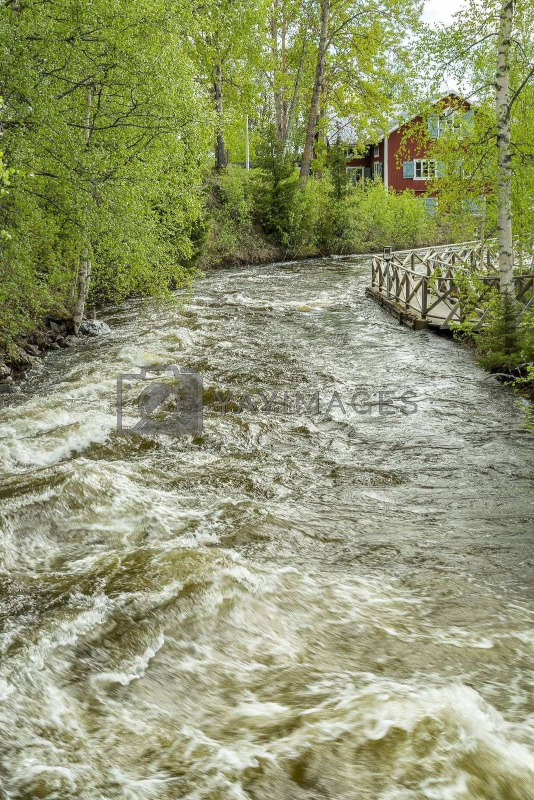 The Rapids at Renforsen in Vindeln, Sweden with old mill.