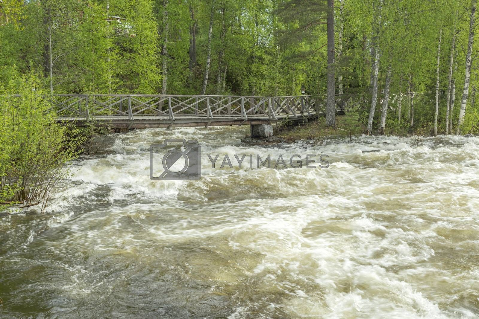 The rapids at Renforsen in Vindeln, Sweden with a wooden bridge.