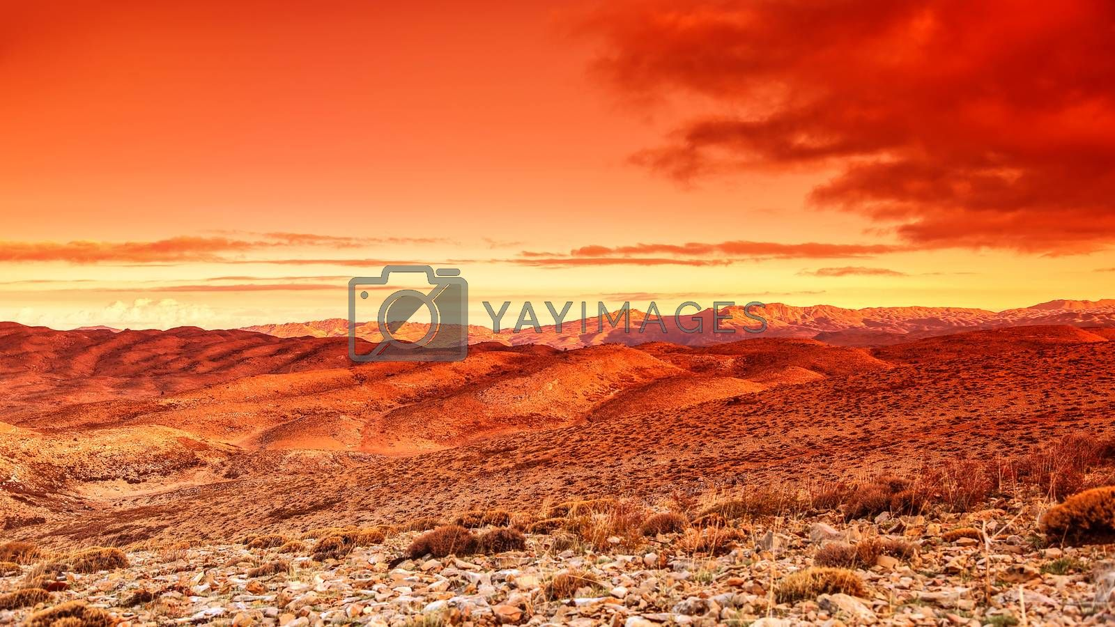 Futuristic landscape, beautiful dramatic red sunset over hot dry wild desert, amazing lands of wilderness