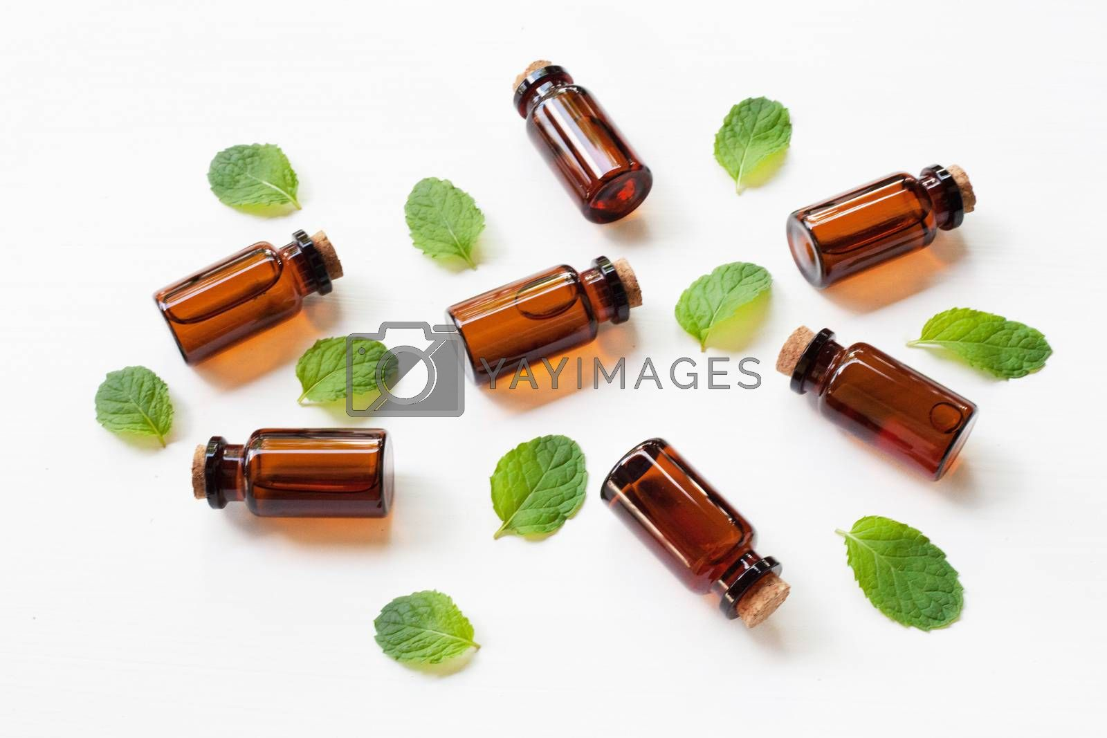 Mint Essential Oil in a Glass Bottle with leaves on white backgr by Bowonpat
